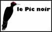 logo-picnoir-vignette